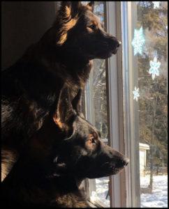 Maya and Shoka
